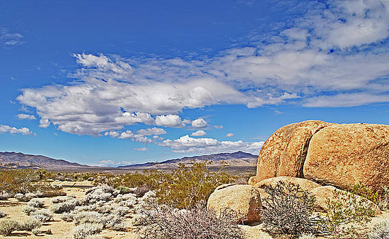 Gneiss Boulders at Joshua Tree by Richard Risely