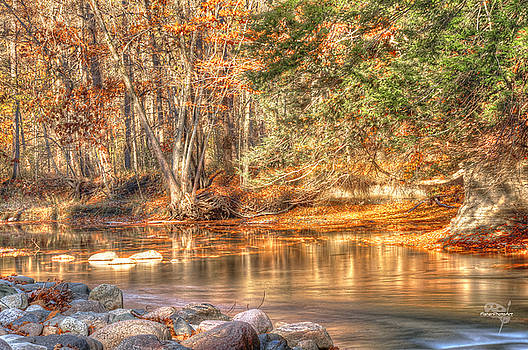 Golden Creek by Brian Fisher