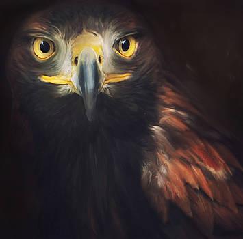 Golden Eagle  by Suesy Fulton