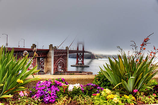 Golden Gate 2 by Al Perry