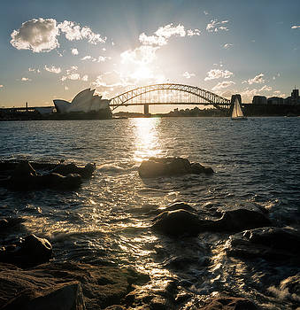 Golden hour in Sydney Harbour by Daniela Constantinescu
