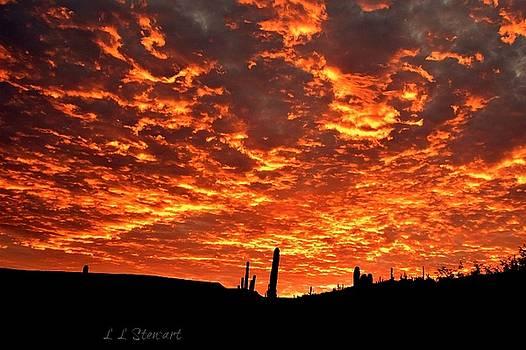 Golden Sunrise by L L Stewart