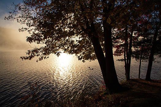 Karol Livote - Good Morning