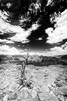 Grand Canyon landscape by Alex Conu