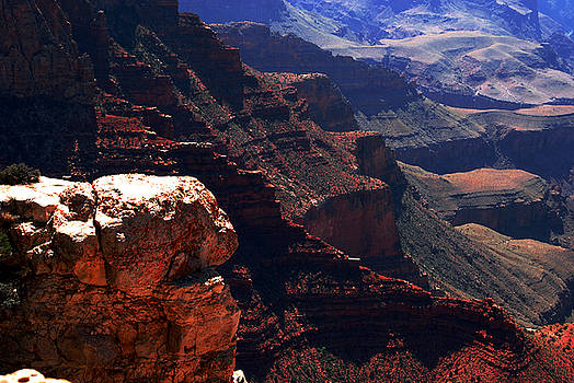 Susanne Van Hulst - Grand Canyon View