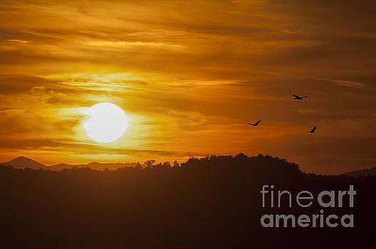 Dan Friend - Grandview park at Turkey Spur Overlook at sunset