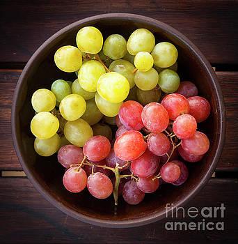 Tim Hester - Grapes