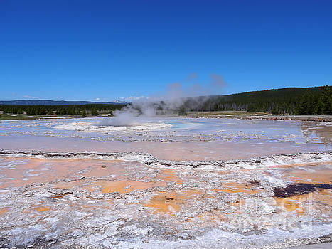 Great Fountain Geyser in Yellowstone National Park by Louise Heusinkveld