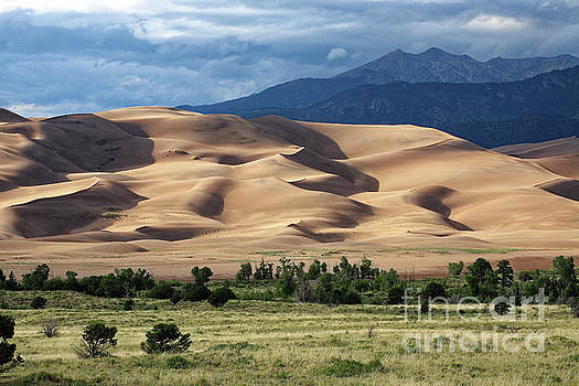 Great Sand Dunes NP, Colorado, USA by Kevin Shields