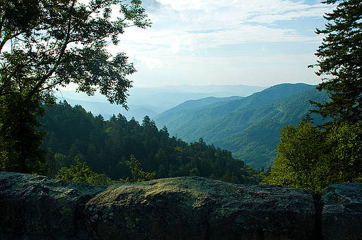 Great Smokey Mountains by Sheri Heckenlaible