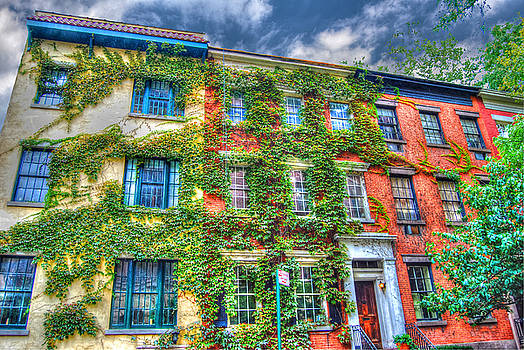 Greenwich Village Ivy 2 by Randy Aveille
