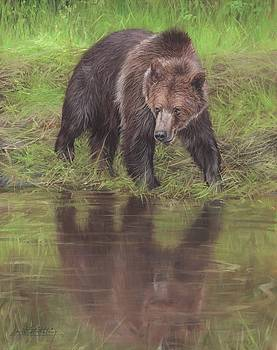Grizzly Bear At Water's Edge by David Stribbling