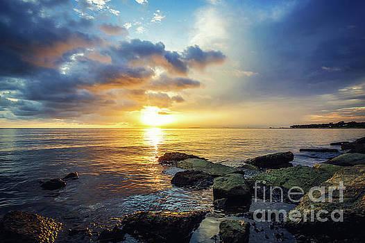 Gulf Coast Sunset by Joan McCool