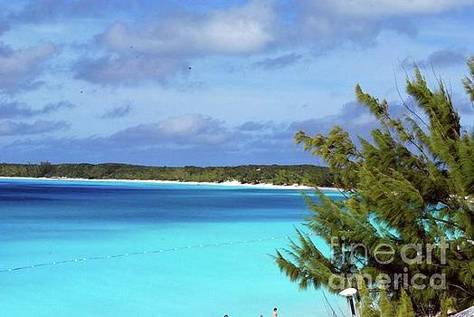 Gary Wonning - Half Moon Cay