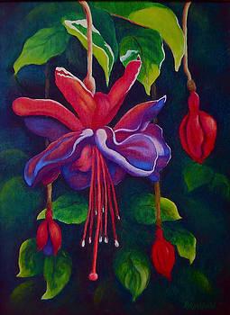 Hanging Fuchsia by Barbara Rockhold