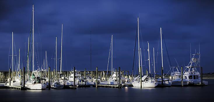 Harbor at Dusk  by Christine Tyson
