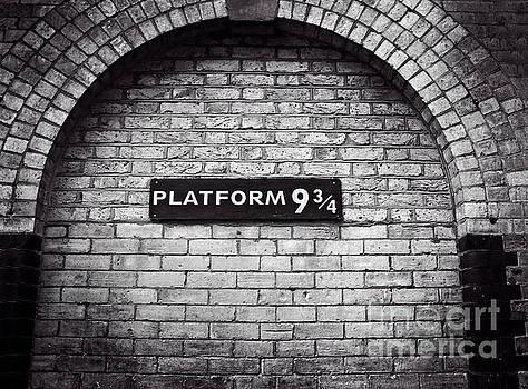 Harry Potter Art by Doc Braham