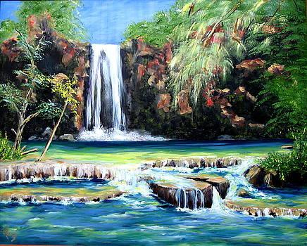 Havasu Falls by Thomas Restifo