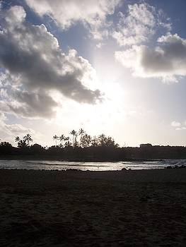 Hawaiian Morning by Michelle Miron-Rebbe