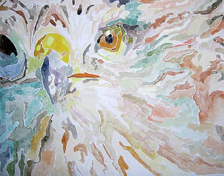 Hawk by Lea Cox