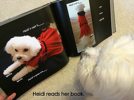 Heidi Reads Her Book by Mary Beth Landis
