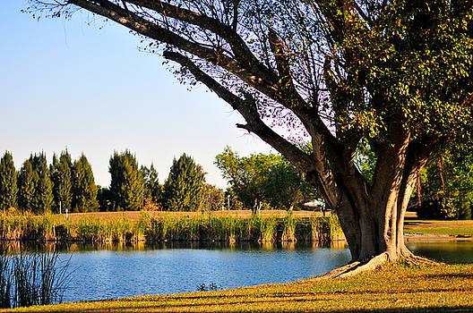 Heritage Park by Mandy Wiltse