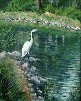 Heron At Bridgeport by Olga Kaczmar