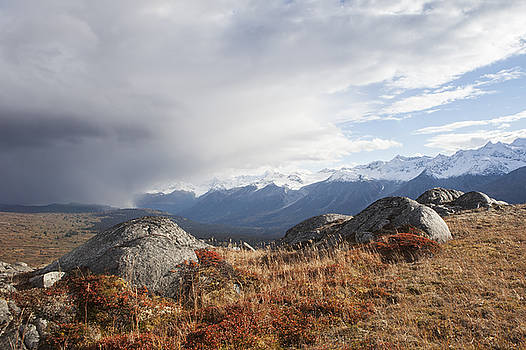 High Country in Fall by Michele Cornelius