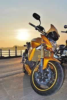 Honda Sunset by Paul Fox
