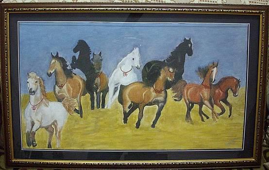 Horses by Rajendra Parekh