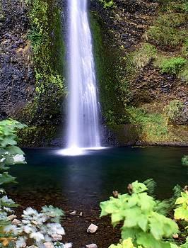Marty Koch - Horsetail Falls