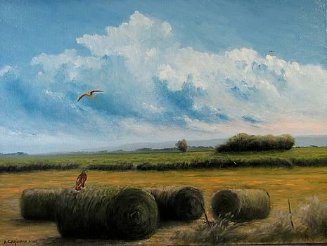 Hunting by Boris Garibyan