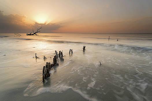 Hunting Island by Derek Thornton