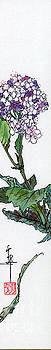 LINDA SMITH - Hydrangea