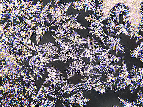 Ice crystals by Jim Wright