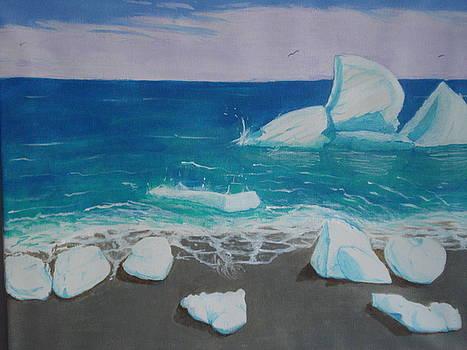 Iceberg off the shore of Newfoundland by Tonya Hoffe