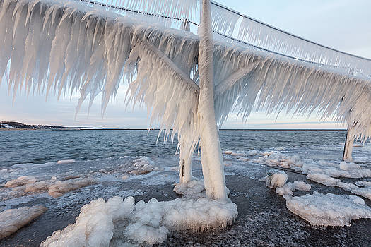 Iced Over by Fran Riley