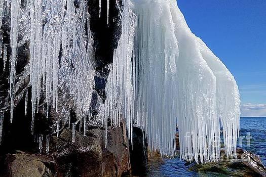 Icy Beauty by Sandra Updyke