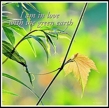 In Love with the Green Earth by A Gurmankin