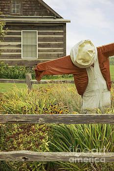 In the Garden by Margie Hurwich