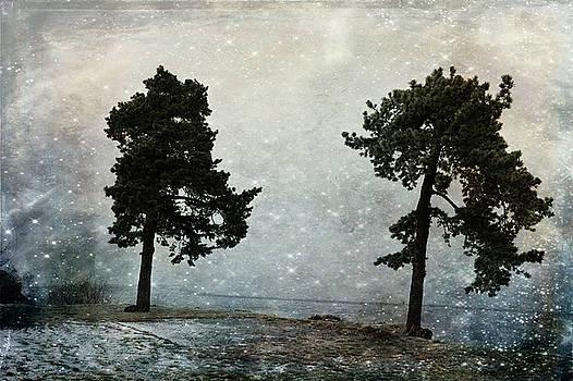 Invisible Horizon by Randi Grace Nilsberg