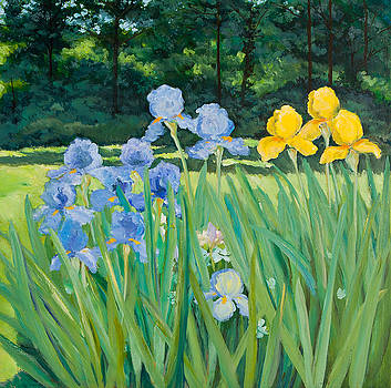 Irises In The Garden by Betty McGlamery