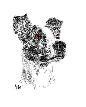 Jack Russell Mix @valentino.jr.thedog by ZileArt