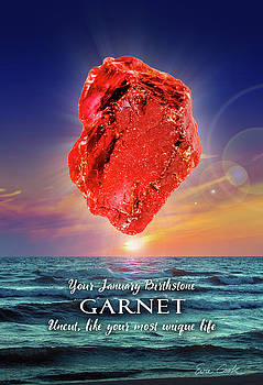 January Birthstone Garnet by Evie Cook