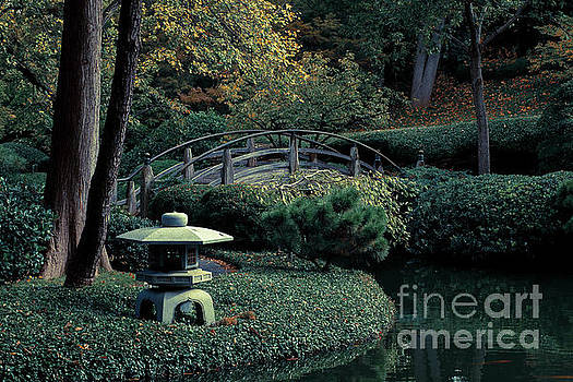 Japanese Garden in Summer by Iris Greenwell