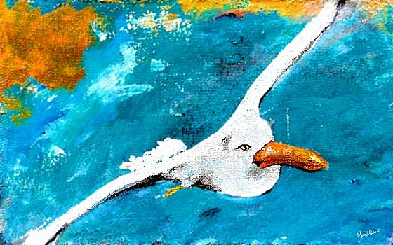 Marcello Cicchini - Jonathan Livingston 2017
