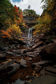 Kaaterskill Falls  by Anthony Fields