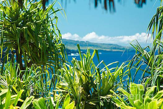 Kahanu Garden Honomaele Hana Maui Hawaii  by Sharon Mau