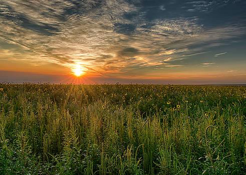 Kansas Sundown by Donna Caplinger