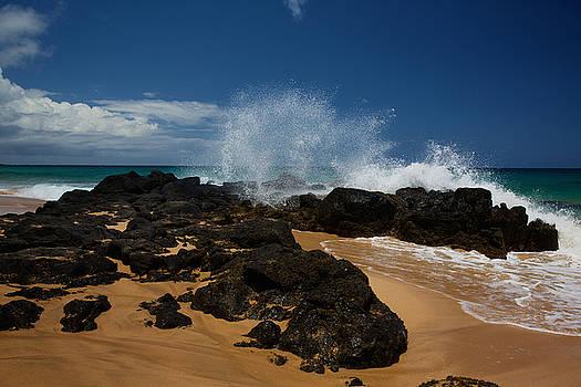 Steven Lapkin - Kauai Secret Beach